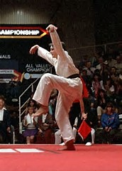 Karate Kid kicking