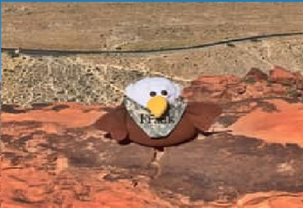 Frank the Eagle